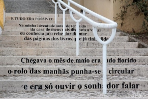 Descubra as Escadas com Poesia